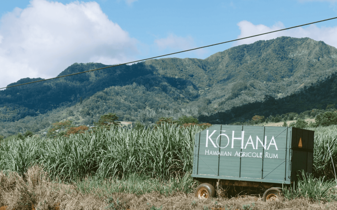 Ko Hana Rum Distillery: Work of the Cane