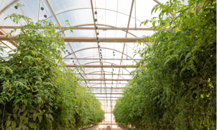 Sensei Ag: The Future of Farming